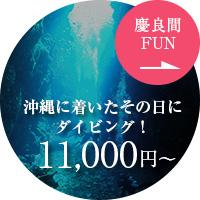 慶良間諸島 沖縄に着いたその日にダイビング! 10,000円~