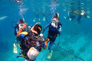 ケラマ体験ダイビング2