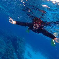 慶良間体験ダイビング