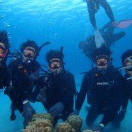 ケラマ体験ダイビング