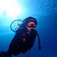 ケラマファン&体験ダイビング