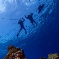 チービシ半日体験ダイビング