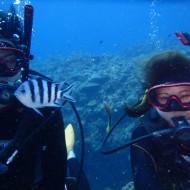 ケラマ半日体験ダイビング